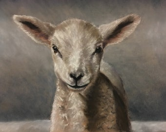 Little lamb - Collectors artist print
