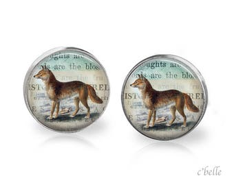 Stud Earrings Fox Fox 31