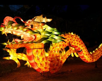 Digital Download Photography -- Chinese Lantern Festival, Large Dragon Illuminated in Taiwan, Night Time Photography