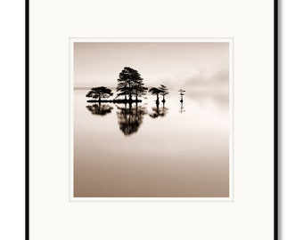 Black and white photography, North Carolina, Lake Mattamuskeet, framed photography, sepia print, cypress trees, zen trees, lake trees