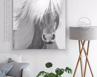 HORSE Portrait in B&W - Art Print Poster Canvas - On Trend