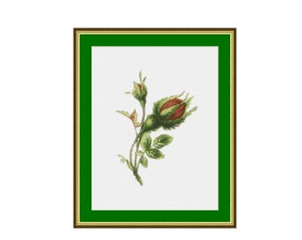Rosebud Floral Counted Cross Stitch Pattern / Chart, Instant Digital Download  (AP224)