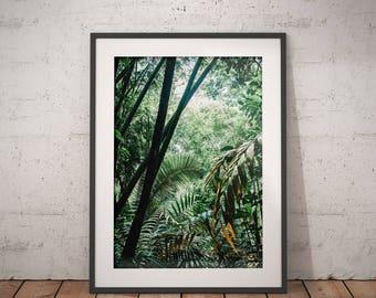 JUNGLE — Thailand // Photography, Print, Poster, Home Decor, Wall Decor, Nature, Gift, Unique, Forest, Garden, Green, Color, Emerald