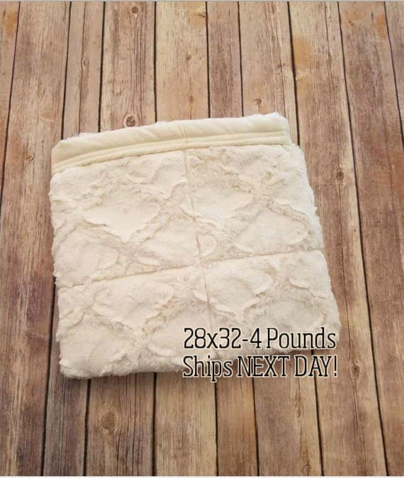 Luxurious Ivory Minky, 4 Pound, WEIGHTED BLANKET, Ready To Ship, 4 pounds, 28x32 for Autism, Sensory, ADHD, Calming, Anxiety,