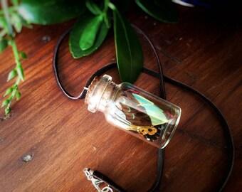 Corked Bottle Necklace // Real Butterfly Wings // Fairy Wing Jar