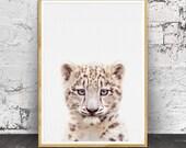 Snow Leopard  Cub Print, Baby Animal Prints, Snow Leopard Cub Wall Art, Nursery Animal Print, Nursery Animals, Baby Leopard  Print, Leopard