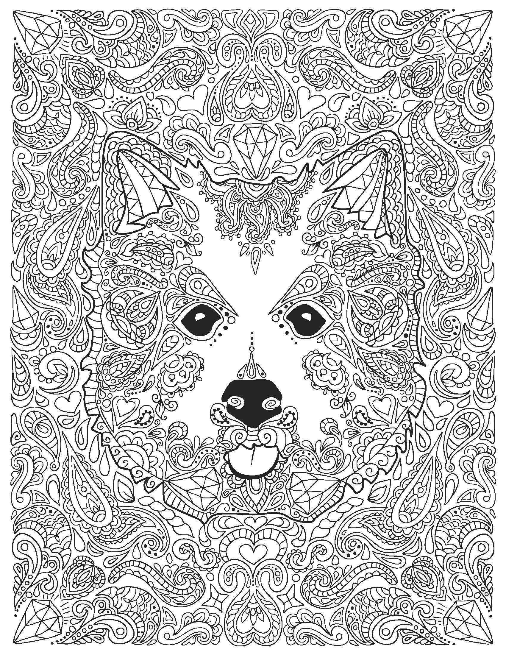 Adult Coloring Page Husky Dog Instant Digital Download