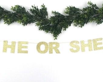 He or She Banner | Baby Shower Banner | Baby Shower Decor | Gender Reveal Banner | Oh Baby | He or She | Boy or Girl Banner l Gender Reveal