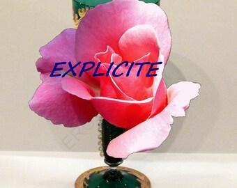Curiosa erotic Venetian glass  naughty Murano phallus