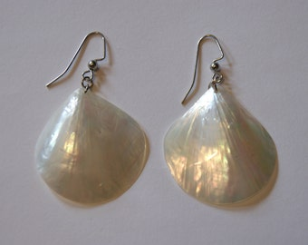 Translucent seashell earrings