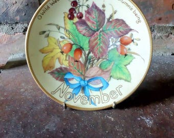The Country Diary of an Edwardian Lady Limited Edition Plate 'November' Bradex Davenport Excellent condition