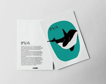 ORCA Print. ANIMAL Prints. Illustration of WHALES. Animals for learning. Kids room and Homeschooling. Learning Prints Wall Art.