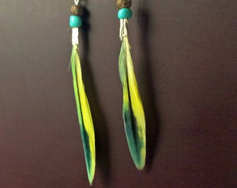 Boho Budgie's Pretty Parakeet Feather Earrings