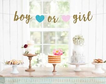 Boy or Girl Banner, Baby Shower Banner, Gender Reveal Banner, Baby Photo Prop, Gender Reveal Sign, New Baby, Baby Sprinkle, Boy or Girl