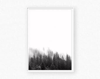 Forest print, forest wall art, black and white forest photography, nature photography, nature print, minimalist landscape, nature decor
