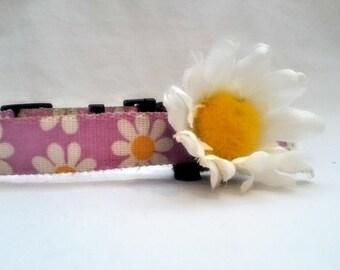 daisy collar flower