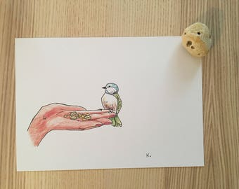 Little bird - drawing