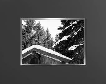 Pine Tree Forest Digital Downloadable Tree Wall Decor Lodge In Snow Cottage Photo Black White Mountain Modern Nature Print Forest Photo Art