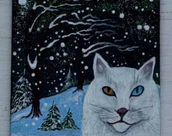 "Miniature ""Angora snow cat"""