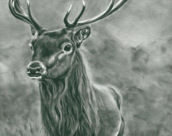 Black and white Wall Art - Monotone wall art - Stag Picture - Stag Painting - Woodland Animal - Animal Gift -  British Wildlife - Animal Art