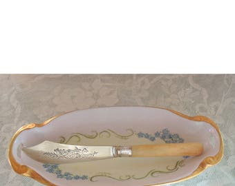 Vintage Bone Handled Cheese Knife, Silver Blade, Aesthetic Period,  Cheese Server