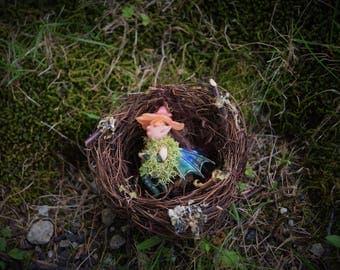 Nestling Pixie, Sleeping Baby Faerie, Miniature Sleeping Pixie, Orange Flower Cap Fairy in a nest