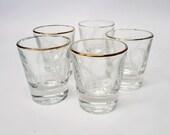 5 Petits verres à shoote...
