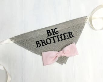 Gray Big Brother Dog Bandana with Pink Bowtie for Pregnancy Announcement Newborn Photos