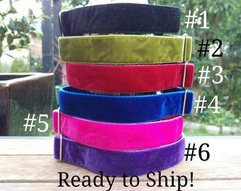 "READY TO SHIP! Tag/House Collars - 1"" - Whippet 10-15""- Velvet"
