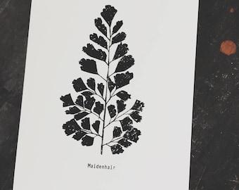 Botanical Fern Print Art Print, Botanical Fern Print, Fern Print Art, Botanical Fern Print Wall Art, Modern Botanical Art Print, Monochrome