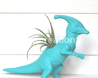 Custom Large Dinosaur Planter with Air Plant Included Room Decor- Dorm Room Decor- Birthday Gift- Home Decor- Teacher Gift