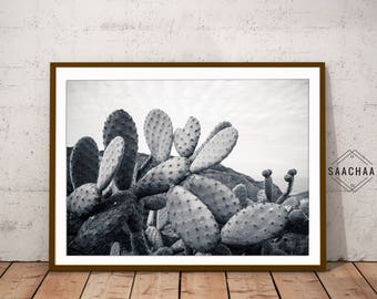 Monochrome cactus, Modern cactus print, A4 poster cactus, Large cactus art, Large cactus print, Cactus downloadable, Large cactus poster