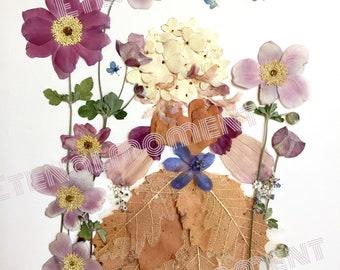 Pressed Flowers Photo 5