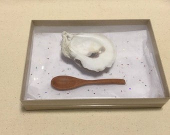 Real FL Oyster Shell Salt Dip Cellar Condiment Server with Redwood Spoon Seashell