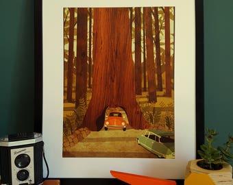 VW Beetle Yosemite Redwood National Park Illustration Print