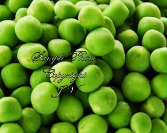Little Marvel Shelling Pea 150 Seeds Heirloom Sweetest Round Pods vegetable Cool Weather Spring or Fall Use Fresh Frozen-Great in Salads