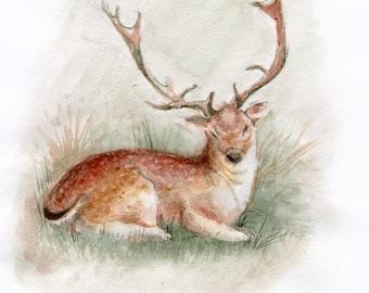Deer Art- Original Watercolor Painting - 5,9x8,26 inch