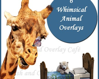 6 Whimsical Animal Overlays for Photoshop and Photoshop Elements...Giraffes, Polar Bear, Lion, Unicorn, Bear, Butterflies.. Funny Characters
