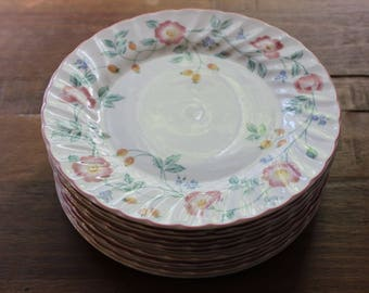 Vintage Churchill Briar Rose Dinner Plates Staffordshire England Set of 12