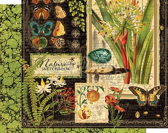 """Graphic 45  """"Nature Sketchbook"""" 12 single sheets"""
