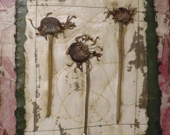 Trio of Pressed Flowers