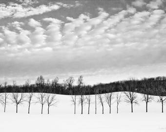 Black and white winter landscape. Photograph printed on canvas.