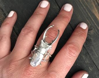Sterling Silver Beetle Totum Ring