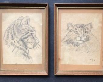 Cat Pencil Drawings