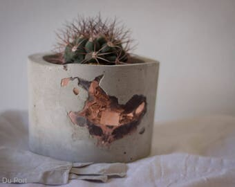 Exposed Copper Concrete Planter