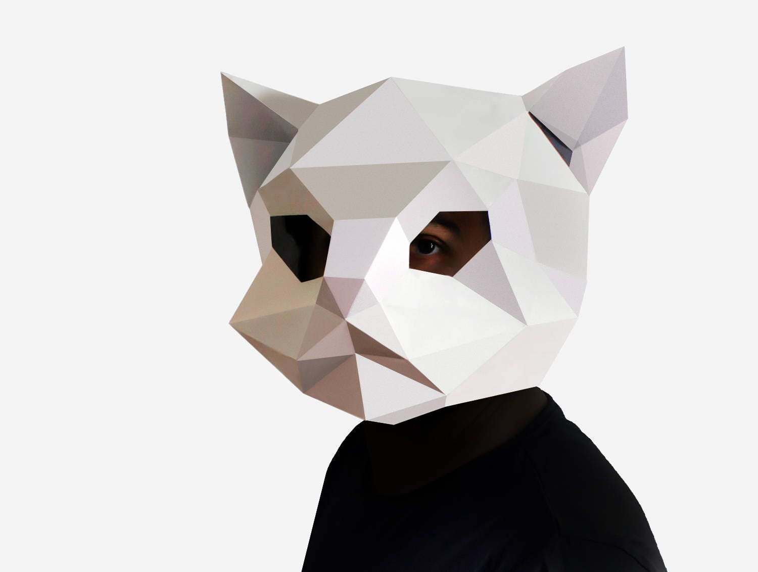 This is a picture of Declarative Paper Mask Template