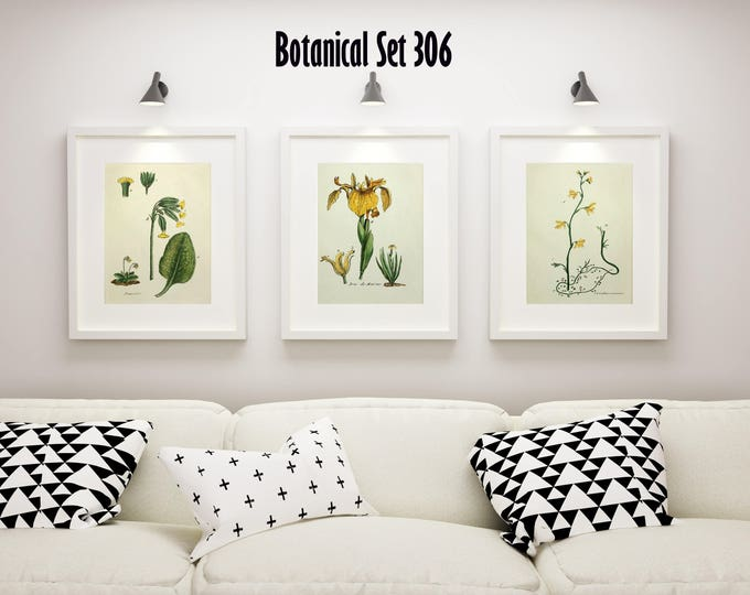 3 Vintage Floral Prints - Matted and Framed - Yellow Floral Prints - Botanical Print Set of 3 - Cottage Chic Decor - French Country Wall Art