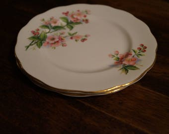 "Royal Albert ""Evesham"" (Apple Blossoms) Salad Plate"
