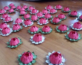 50 lotus flowers to degree/Bachelor/Bachelor/colored water lily gift favors