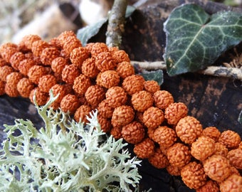 Rudraksha mala beads prayer Nepal - quality A +++